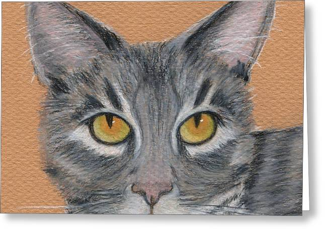 Gray Hair Greeting Cards - Gracie Greeting Card by Jamie Frier