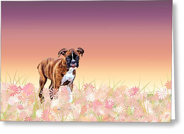 Boxer Digital Greeting Cards - Gracie Puppy Purple Wildflowers Greeting Card by Jamie Pflughoeft