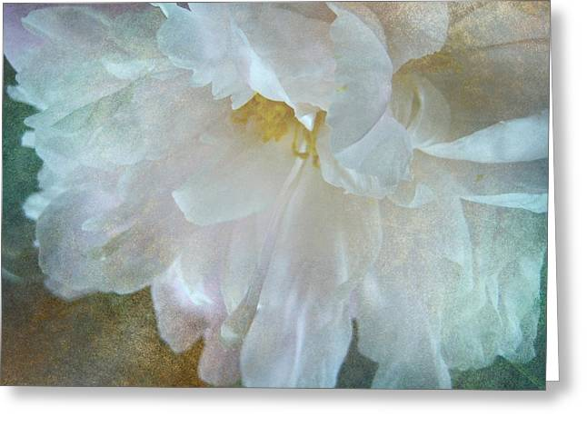 Shirley Sirois  Greeting Cards - Gracious Greeting Card by Shirley Sirois