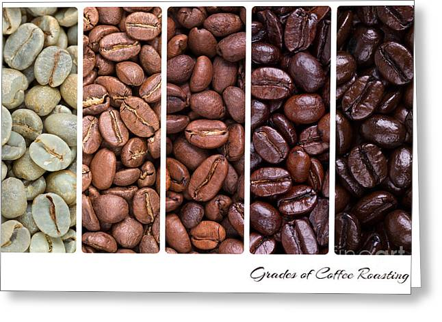 Italian Restaurant Greeting Cards - Grades of coffee roasting Greeting Card by Jane Rix