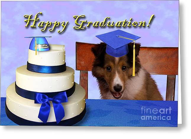 Wildlife Celebration Greeting Cards - Graduation Sheltie Puppy Greeting Card by Jeanette K