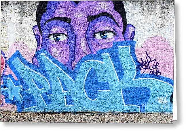 Urban Images Greeting Cards - Graffiti Art Santa Catarina Island Brazil Greeting Card by Bob Christopher