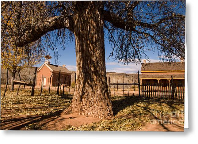 Geobob Greeting Cards - Grafton Ghost Town in the fall Rockville Utah Greeting Card by Robert Ford