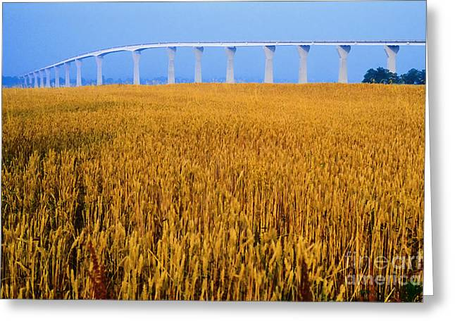 Calvert Greeting Cards - Grain and Route 4 Bridge Greeting Card by Thomas R Fletcher