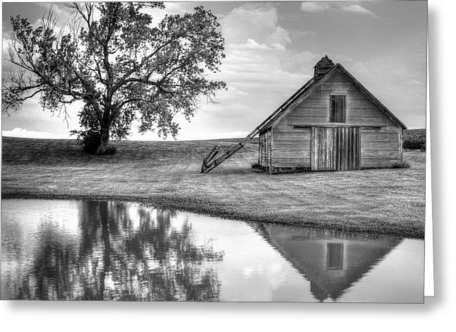 Recently Sold -  - Old Barns Greeting Cards - Grain Barn - Lone Tree - Square Greeting Card by Nikolyn McDonald