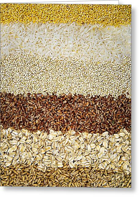 Wholewheat Greeting Cards - Grains Greeting Card by Elena Elisseeva