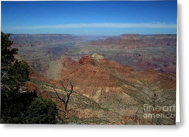 Native American Rug Greeting Cards - Grand Canyon 4 Greeting Card by Barbara Richardson