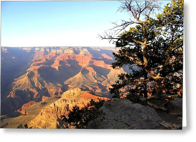 Awe Inspiring Greeting Cards - Grand Canyon 63 Greeting Card by Will Borden