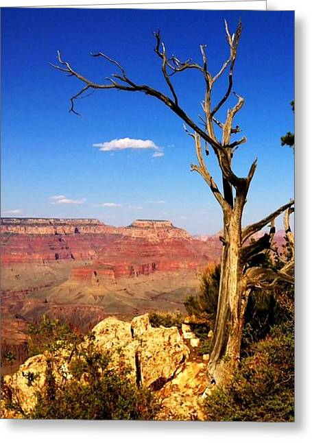 Print Photographs Greeting Cards - Grand Canyon Arizona Greeting Card by Marie Naturally