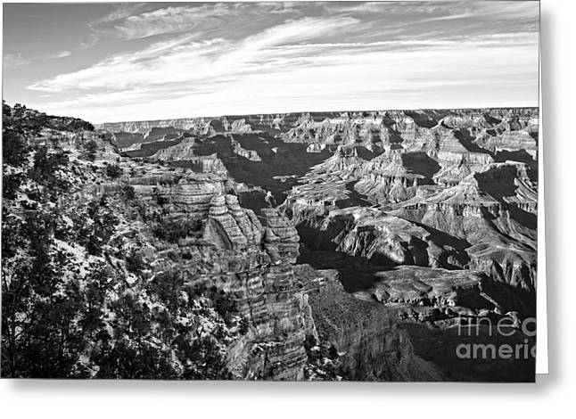 Fineartphotography Greeting Cards - Grand Canyon December Glory in Black and White Greeting Card by Lee Craig