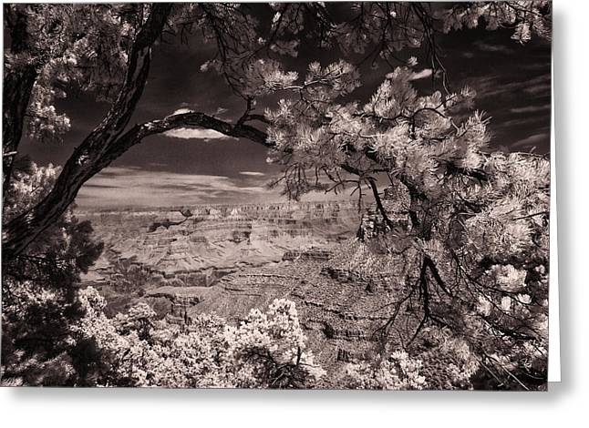 Warn Tones Greeting Cards - Grand Canyon Greeting Card by Marc Malin