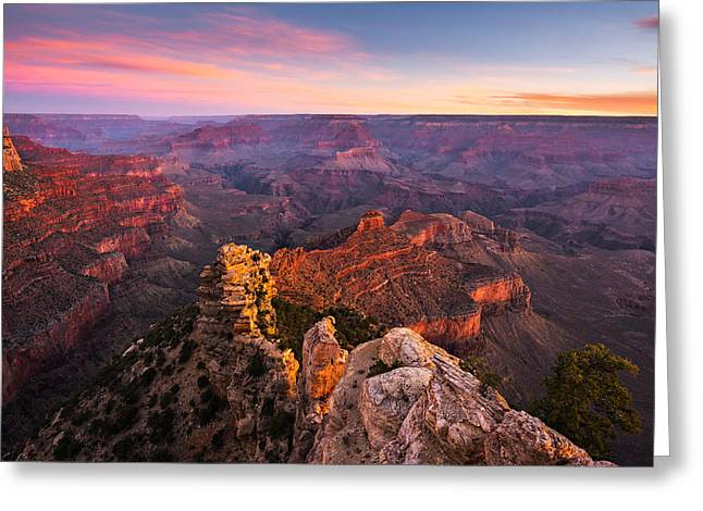 Yaki Greeting Cards - Grand Canyon - Morning Glow Greeting Card by Adam Schallau