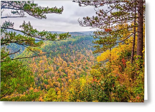 Photos Of Autumn Greeting Cards - Grand Canyon of Pennsylvania Greeting Card by Steve Harrington