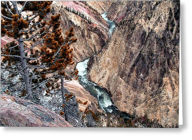 Grand Canyon Of Yellowstone 5 Greeting Card by Thomas Woolworth