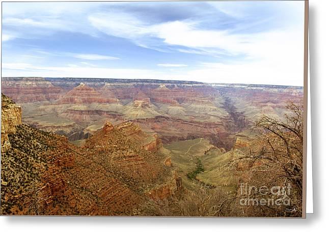 Grand Canyon  Greeting Card by Scott Pellegrin