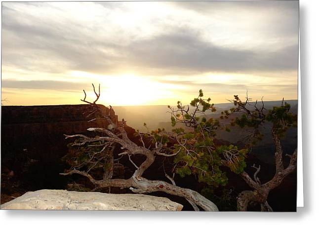 Pause Greeting Cards - Grand Canyon Sunset Greeting Card by Dan Sproul