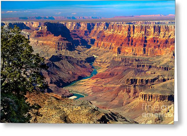 Grand Canyon Sunset Greeting Card by Robert Bales