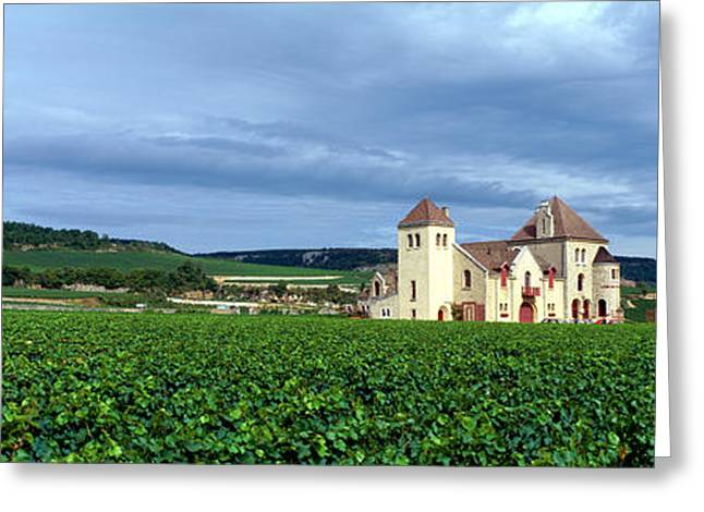 Chateau Greeting Cards - Grand Cru Vineyard, Burgundy, France Greeting Card by Panoramic Images