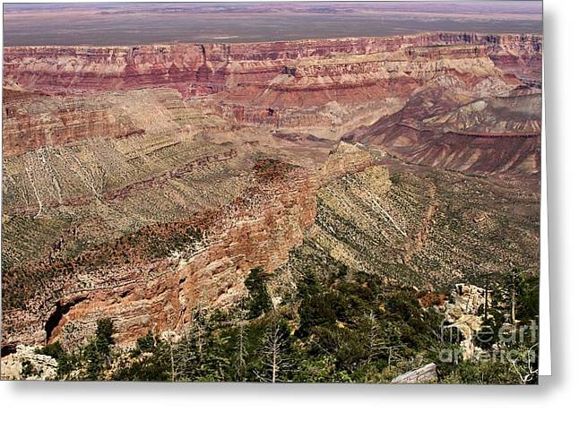 The Grand Canyon Greeting Cards - Grand Imperial Greeting Card by Adam Jewell