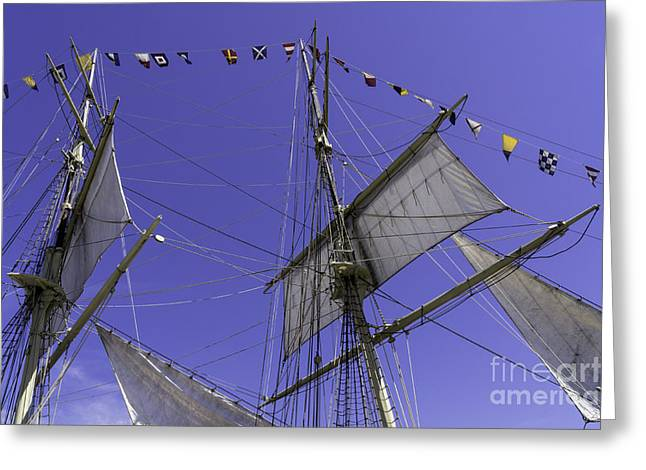 Blue Sailboats Greeting Cards - Grand Mast Greeting Card by Joe Geraci