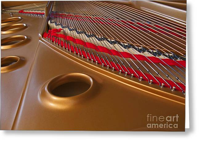 Grand Piano Greeting Card by Ann Horn