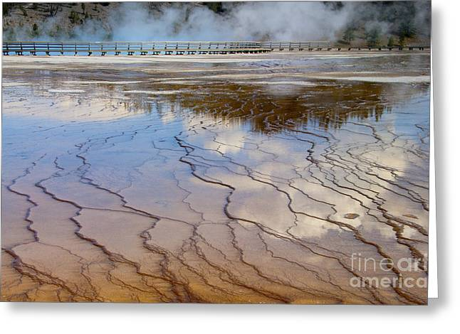 Yellowstone Art Greeting Cards - Grand Prismatic Runoff - Yellowstone Greeting Card by Sandra Bronstein