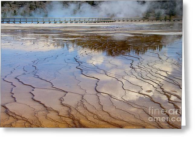 Runoff Greeting Cards - Grand Prismatic Runoff - Yellowstone Greeting Card by Sandra Bronstein