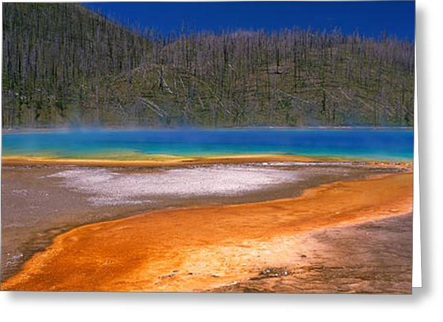 Sulfur Greeting Cards - Grand Prismatic Spring, Yellowstone Greeting Card by Panoramic Images