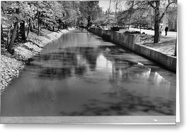 Trees Reflecting In Water Greeting Cards - Grand Rapids Greeting Card by Dan Sproul
