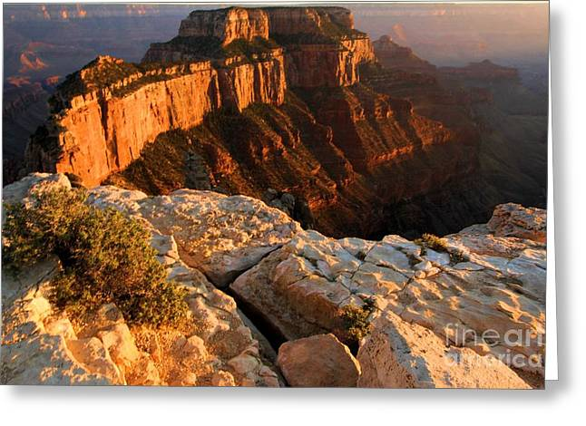 The Grand Canyon Greeting Cards - Grand Soft Light Greeting Card by Adam Jewell