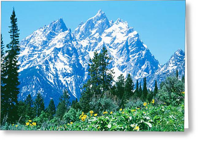 Snow-covered Landscape Photographs Greeting Cards - Grand Teton National Park Wy Usa Greeting Card by Panoramic Images