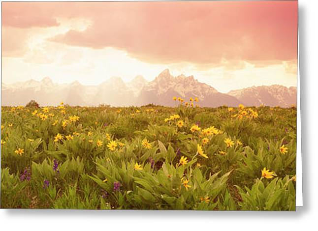 Surreal Photography Greeting Cards - Grand Teton Park, Wyoming, Usa Greeting Card by Panoramic Images