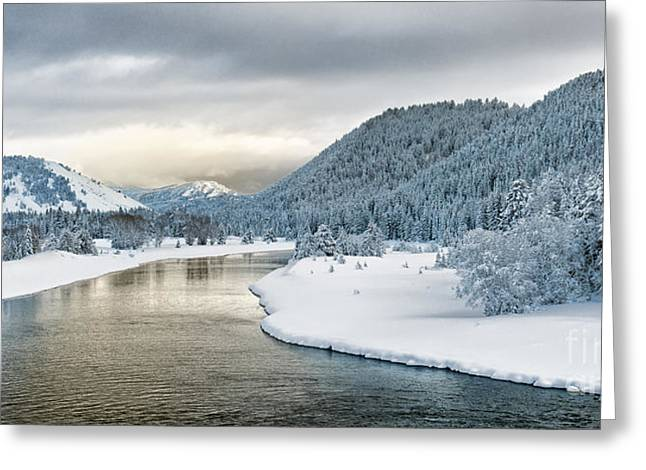 Hoar Frost Greeting Cards - Grand Teton Winter Morning Greeting Card by Sandra Bronstein