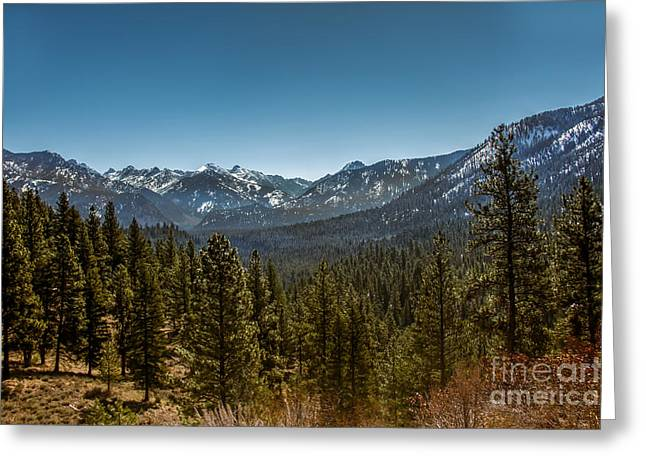 Outlook Greeting Cards - Grandjean Valley View Greeting Card by Robert Bales