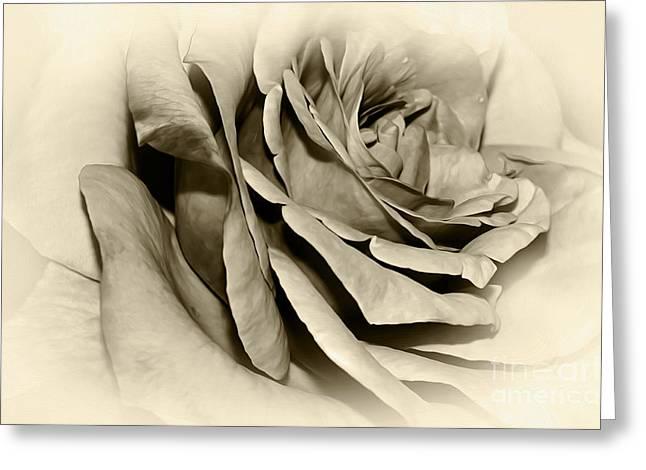 Grandma's Rose Greeting Card by Kaye Menner