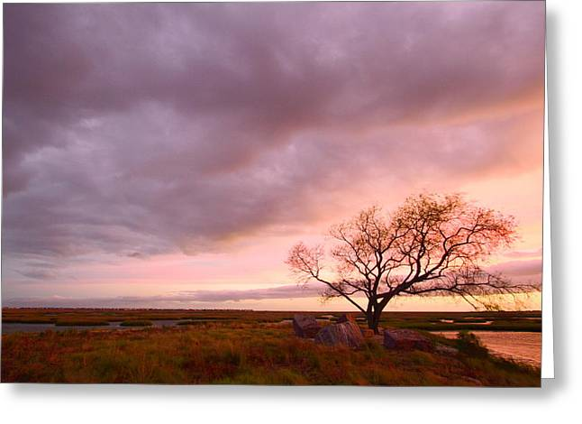 Galveston Greeting Cards - Storm at Dusk 2AM-108346 Greeting Card by Andrew McInnes