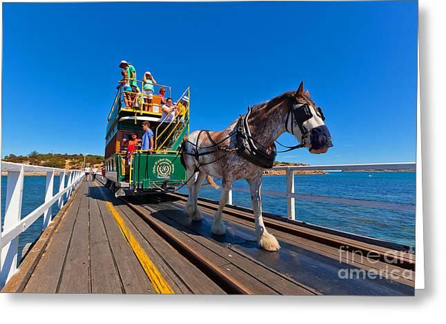 Granite Greeting Cards - Granite Island Tram Greeting Card by Bill  Robinson