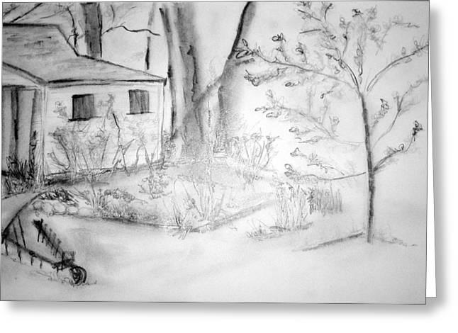 Granpa's Backyard IIi Greeting Card by Helena Bebirian