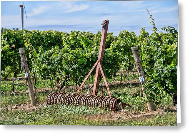 Concord Grapes Greeting Cards - Grape Field Equipment Greeting Card by Linda Muir