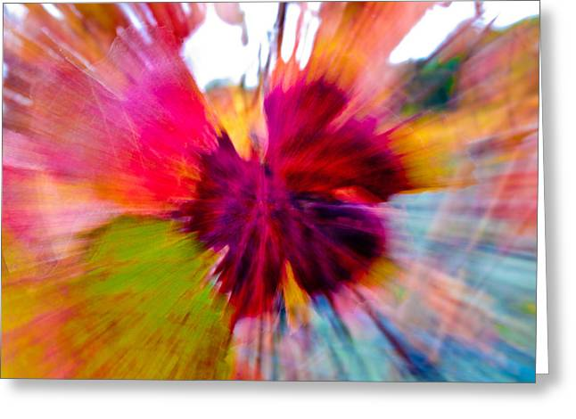 Grape Vine Burst Greeting Card by Bill Gallagher