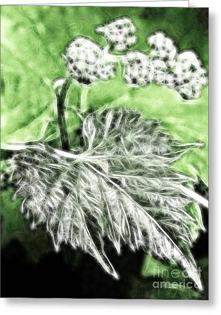 Grapevine Autumn Leaf Digital Greeting Cards - Grape vine leaf Greeting Card by Odon Czintos