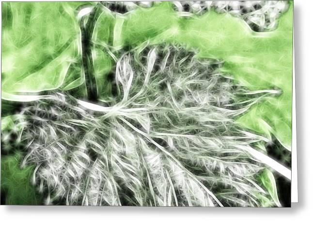 Grape vine leaf Greeting Card by Odon Czintos