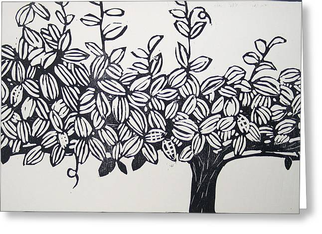 Grape Vines Drawings Greeting Cards - Grape Vine Greeting Card by Mary Mosblech