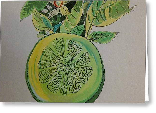 Grapefruit Greeting Card by Olivier Calas