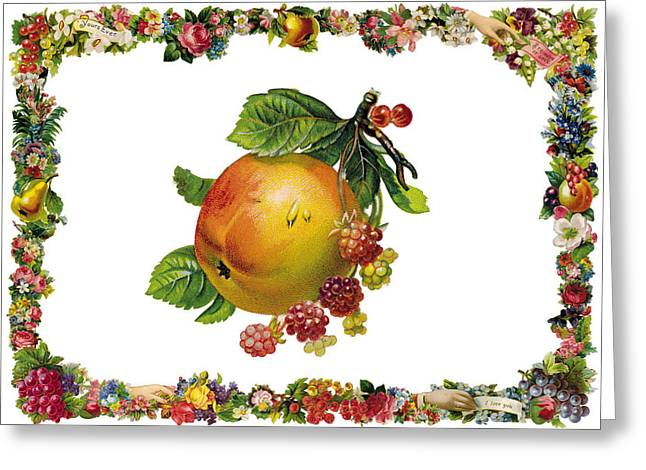 Cards Vintage Greeting Cards - Grapes and Apple Greeting Card by Munir Alawi
