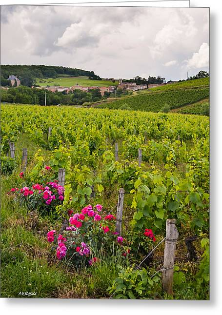 Oingt France Greeting Cards - Grapes and Roses Greeting Card by Allen Sheffield