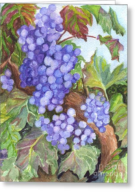 Grape Vine Drawings Greeting Cards - Grapes For The Harvest Greeting Card by Carol Wisniewski