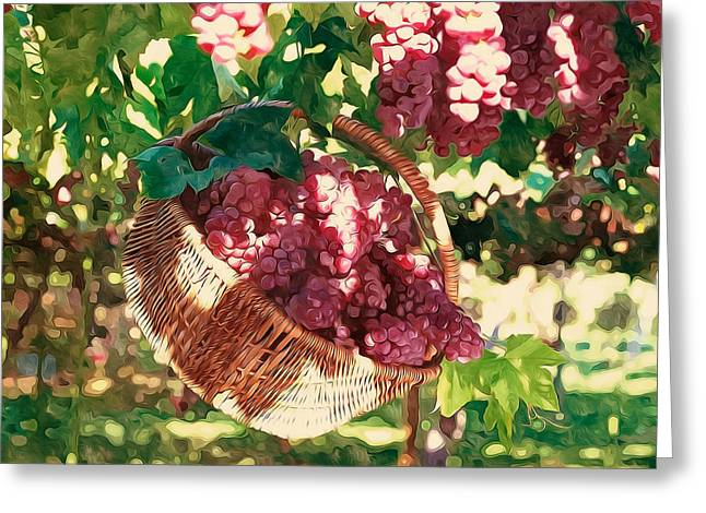 Nature Greeting Cards - Grapes harvest  Greeting Card by Lanjee Chee