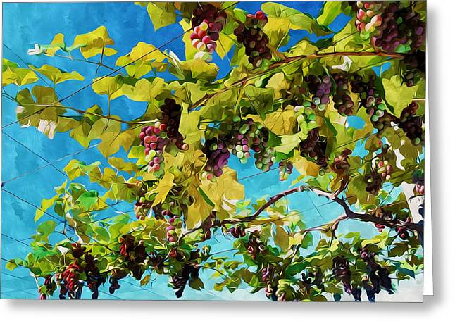 Viticulture Paintings Greeting Cards - Grapes in organic farm Greeting Card by Lanjee Chee