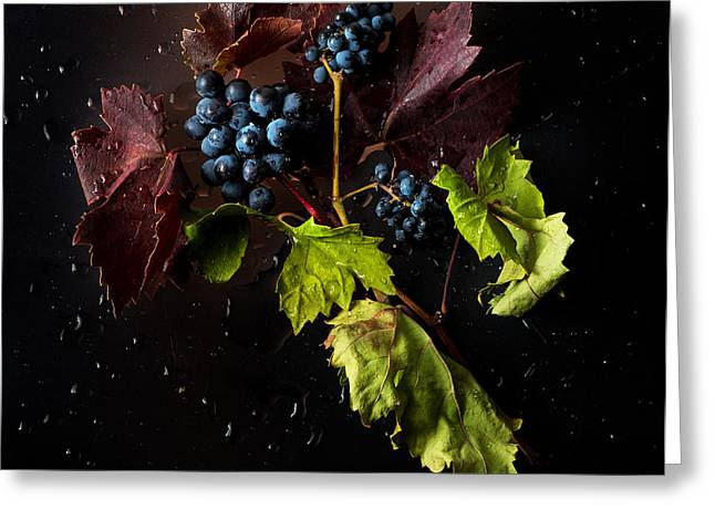 Syrah Greeting Cards - Grapes Greeting Card by Ivan Vukelic